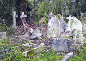 image of a victorian cemetry